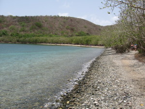 the rocky beach at Leinster Bay
